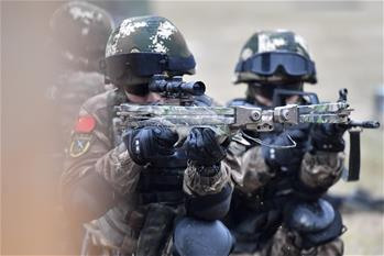 福建武警:特戰訓練礪精兵