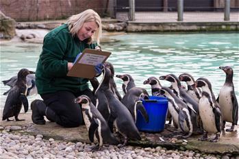 倫敦動物園舉行年度盤點