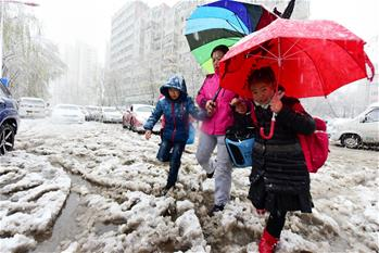 黑龍江發布暴雪黃色預警