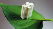 租赁住房将成可长期接受的住房消费方式