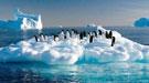 央行:逐步将气候变化风险纳入宏观审慎政策框架