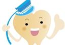 多吃蘿卜有助清潔牙齒