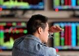 【新華調查】2015年,你炒股賺錢了嗎?