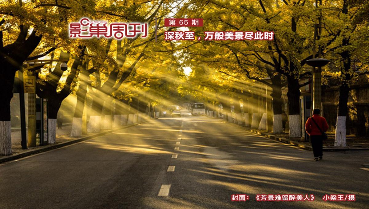 【影巢周刊】深秋至,萬般美景盡此時