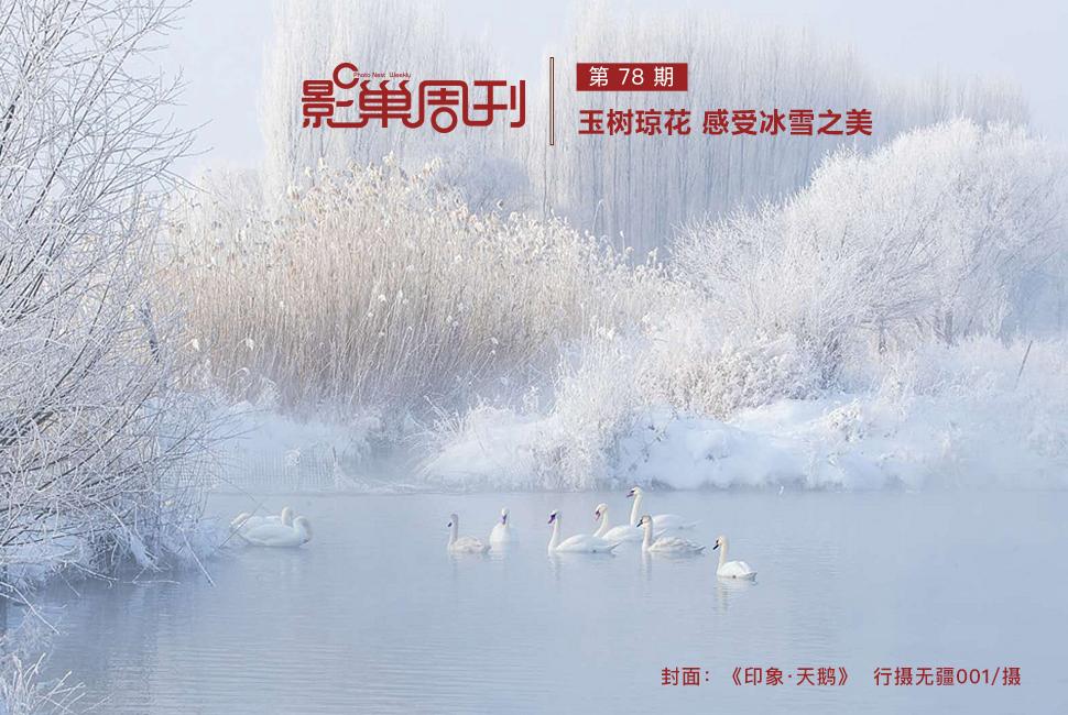 【影巢周刊】玉樹瓊花 感受冰雪之美