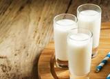 人造奶研發取代牛奶? 專家:活性物質復制不了