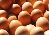 優質蛋白十佳食物排行榜,你愛吃哪幾個?