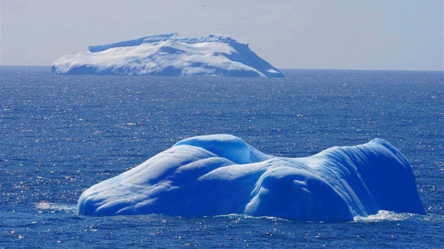 鏡頭帶你走進南極威德爾海的冰山與鯨魚