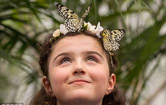英国博物馆举行蝴蝶展 小朋友