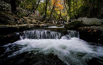攝影師實拍山西綿山秋色 溪水潺潺山谷回聲醉遊人