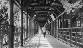 羅湖橋,你是一扇窗