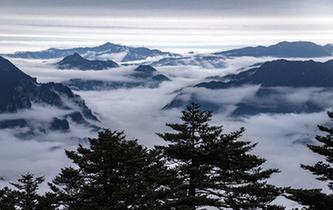 雲霧神農架