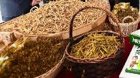 莫道農家無寶玉 遍地黃花是金針