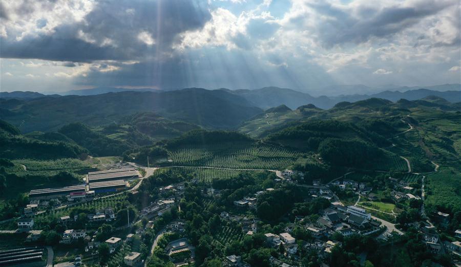 貴州海雀村:將綠水青山變成戰勝貧困的金山銀山