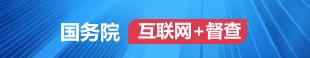 """國務院""""互聯網+督查"""""""