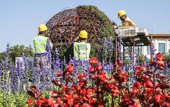 天安門廣場國慶花卉開始布置