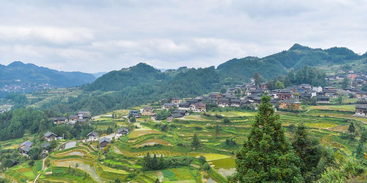 龍塘村全景