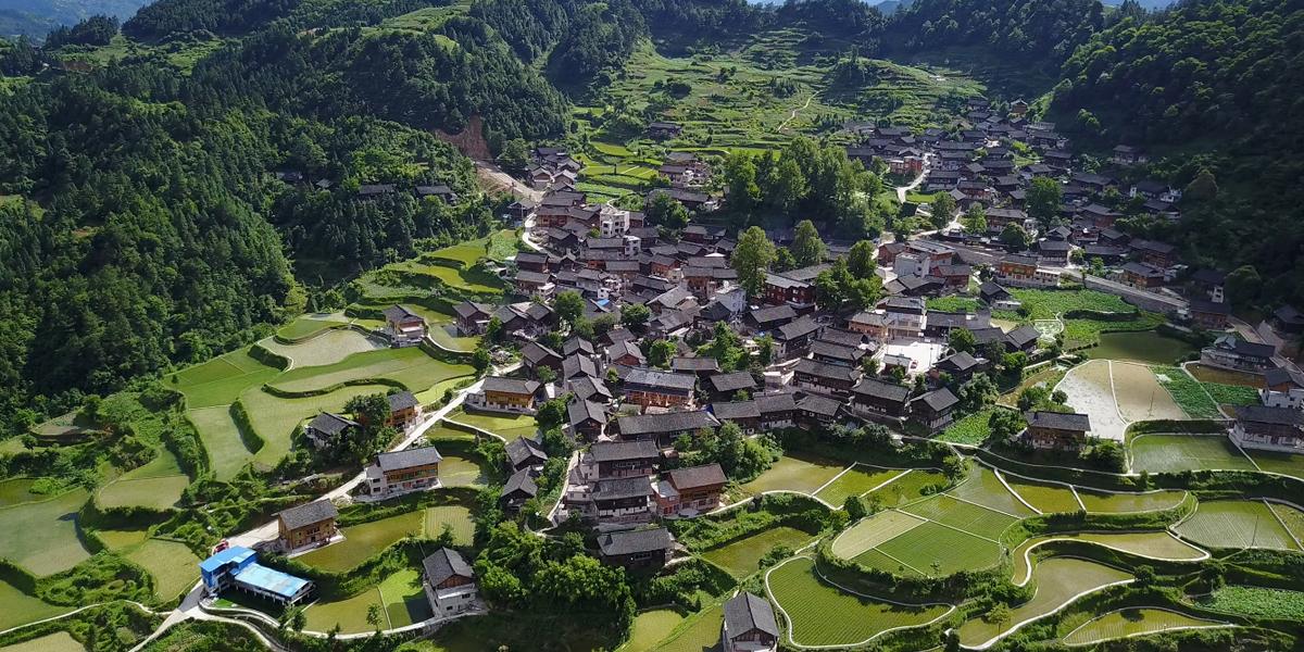 龍塘村全景圖
