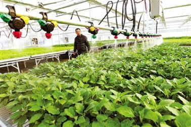 物聯網讓農業生産更智慧
