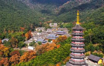 寧波:千年古剎 層林盡染