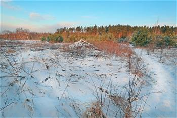 白俄羅斯春雪