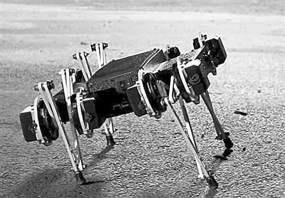可愛機器人 體型靈巧如小狗 能開門翻圍墻