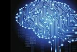 人工智能可分辨健康組織與癌組織