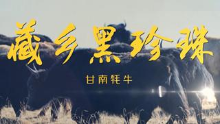 溯源中國名品推薦·藏鄉黑珍珠