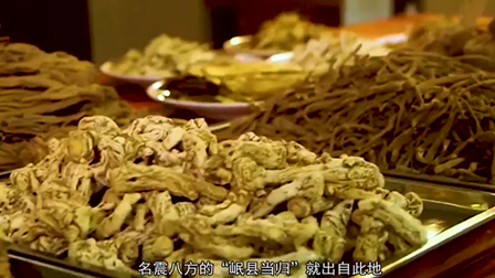 溯源中國名品推薦·岷縣藥王傳