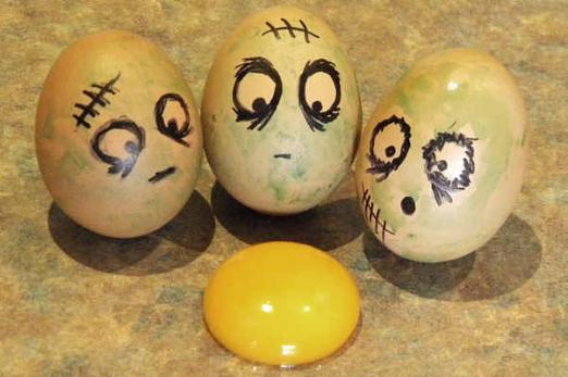 鸡蛋趣图图片