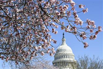美國會眾議院未能推翻總統否決令