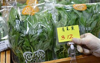 從田間到菜籃——供港蔬菜的跨境之旅
