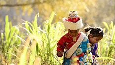 松巴藏寨之秋