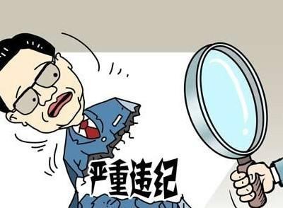 """近20名中管幹部被立案審查 聚焦2017中國反腐""""成績單"""""""