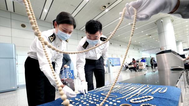 广州海关一季度共查获走私象牙制品逾24千克
