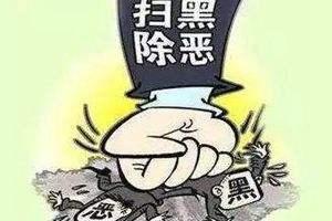 """掃黑除惡""""山東戰役""""成績單:""""四級約談""""8萬余人"""