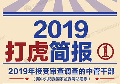 2019打虎简报:打虎不停,但不仅仅是打虎