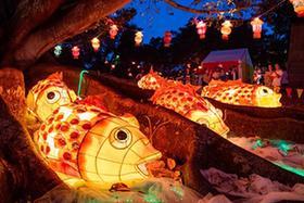 新西蘭奧克蘭舉辦盛大元宵燈節