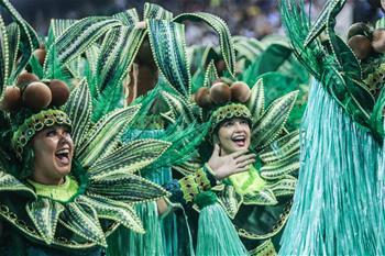 巴西聖保羅狂歡節正式開幕