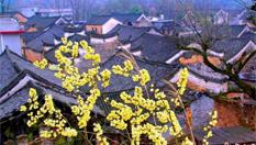 湖南永州零陵發現明清時期古建築群