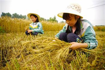 河北灤縣:學農事 度假期