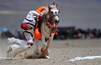 西藏阿裏舉行賽馬競技大賽
