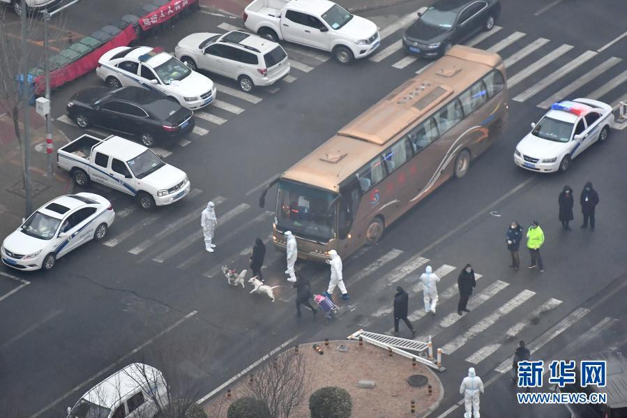北京大兴:从1月25日起 集中隔离观察人员可携带宠物一同前往
