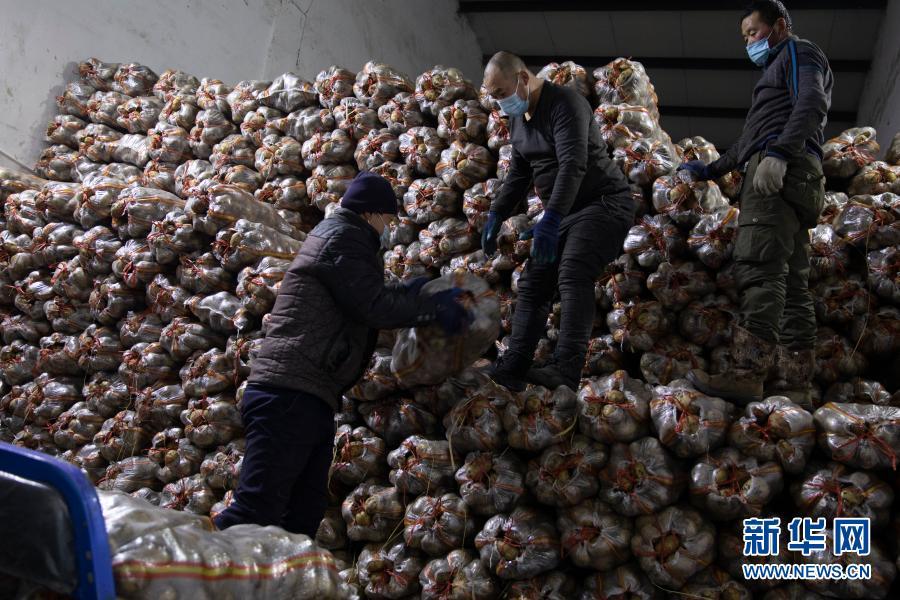 """黑龙江战""""疫""""一线调查:这里发现的防疫难点 值得全国警惕"""