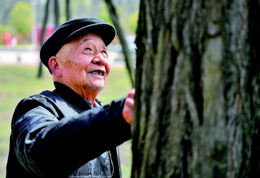 豫东黄河故道 百年绿色传奇