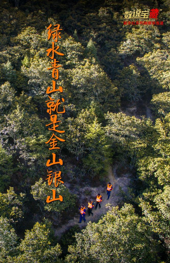 """70万""""生态卫士""""守护西藏绿水青山"""