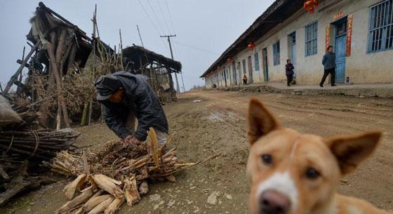 与麻风病告别——记剩头麻风村最后的居民图片