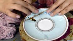 小瓷器連接大世界——淄博篇