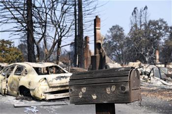 加州北部森林大火已造成35人死亡