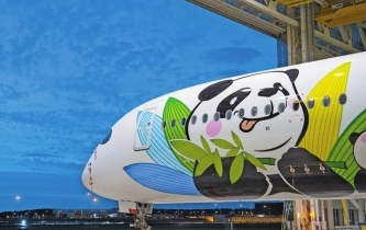 大熊貓萌上天 川航熊貓客機首飛北京